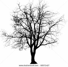 stock vector : vector drawing of the big naked winter tree