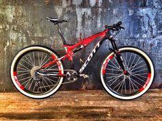 Cool Viking bike for Nino Schurter