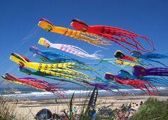 Let's go fly a kite....