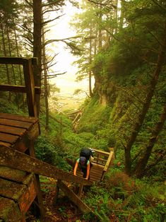 West Coast Trail in B.C. - I must go here immediatly.  I think I'll take a long weekend this summer and drive up.