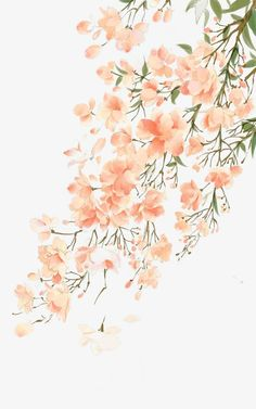 flower drawing wallpaper Hand Painted The varicolored world plant vegetation illustration Flower Wallpaper, Pattern Wallpaper, Wallpaper Backgrounds, Watercolor Wallpaper Iphone, Drawing Wallpaper, Trendy Wallpaper, Pink Wallpaper, Phone Backgrounds, Art Floral