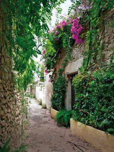 Hanging plants on the stone walls.  Narrow street of Dalt Vila in Ibiza.