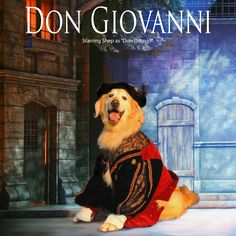 """Shep looking positively 'tenorial' as """"Ottavio"""" in Don Giovanni"""
