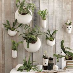 Designed by our frequent collaborator Shane Powers, these Ceramic Wall Planters (with one designed specifically for orchids) turn plants into works of art. Arrange several in a group to create a hanging garden.The new indoor gardening Cool Plants, Air Plants, Indoor Plants, Indoor Gardening, Urban Gardening, Potted Plants, Indoor Succulents, Porch Plants, Hanging Succulents