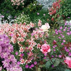 A fun mixture of flowers is perfect for a cottage garden! Find more tips for cottage garden design: http://www.bhg.com/gardening/design/styles/cottage-garden-design-tips/?socsrc=bhgpin071312mixedflowers#page=10