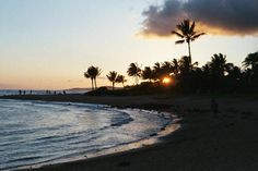 Book your tickets online for Poipu Beach Park, Poipu: See 2,435 reviews, articles, and 557 photos of Poipu Beach Park, ranked No.1 on TripAdvisor among 25 attractions in Poipu.