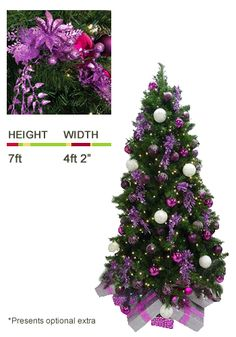 Ambius Trees: Pink and Purple