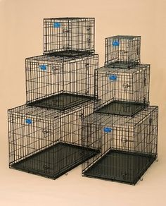 Life Stages 2dr Crate W/Panel => Trust me, this is great! Click the image. : Dog kennels
