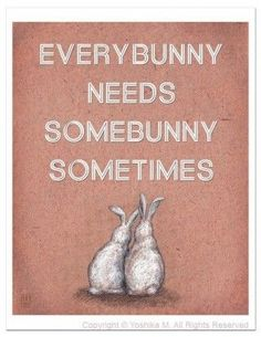 Thanks for helping today. Honey Bunny, Sunny Bunny, and Runny Bunny helped. Or was it Funny Bunny?or No Bunny ! no money for No Bunny! Funny Bunnies, Cute Bunny, Hunny Bunny, Bunny Puns, Bean Bunny, Happy Easter, Easter Bunny, Somebunny Loves You, Here Comes Peter Cottontail