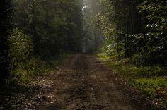 Forest Publicēja Mihails Astapkovics