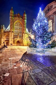 I visited Bath a few days after Christmas.  Next time I'll visit before so I can see the tree.  Bath Abbey, England