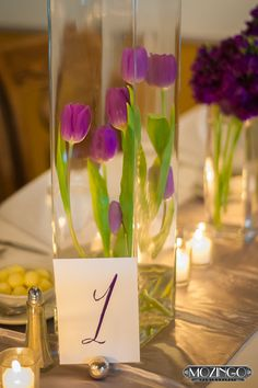 purple tulip reception wedding flowers,  wedding decor, wedding flower centerpiece, wedding flower arrangement, add pic source on comment and we will update it. www.myfloweraffair.com can create this beautiful wedding flower look.