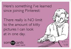 'Here's something I've learned since joining Pinterest: There really is NO limit to the amount of kitty pictures I can look at in one day.' *Check out some of our adoptable cats- http://www.valleycatsinc.org/ *(eCard from- pop-Eggs eCards: http://pinterest.com/popeggs/)
