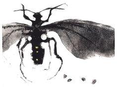 Yellow Dot Wasp