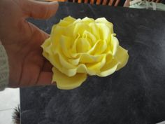 http://www.mcgreevycakes.com/2012/11/13/1606/