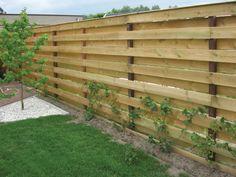 schutting Diy Privacy Fence, Diy Garden Fence, Privacy Fence Designs, Ponds Backyard, Backyard Fences, Outdoor Landscaping, Wood Fence Design, Backyard Creations, Barn Door Designs