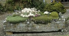 xx..tracy porter..poetic wanderlust...horticulture: Hypertufa planters/faux bois/planter DIY