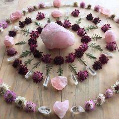Rose quartz, crystal quartz, flower meditation
