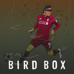Bird Boxes, Liverpool Fc, Comic Books, Football, Comics, Cover, Hs Football, Art, Futbol