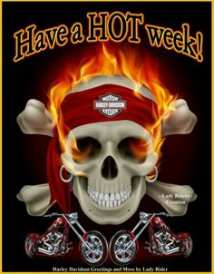 evil skull: Pirate Skull in Flames. Illustration on black Illustration - - Harley Davidson Wallpaper, Harley Davidson Fatboy, Harley Davidson Motorcycles, Skull Flag, Pirate Skull, Joaquin Phoenix, Vintage Halloween Images, Head Tattoos, Background Banner