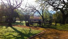 Lazy days @ Hazendal Wine Estate