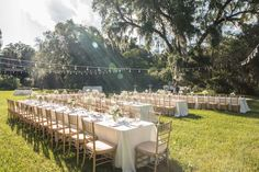 CHARLESTON WEDDINGS -Open-air reception at Magnolia Plantation and Gardens wedding in Charleston, SC by CM Photography