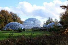 15 Bucket List Things to Do in Zurich, Switzerland Glass Biodomes at the Zurich Botanical Gardens