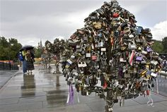 trees of love in Moscow