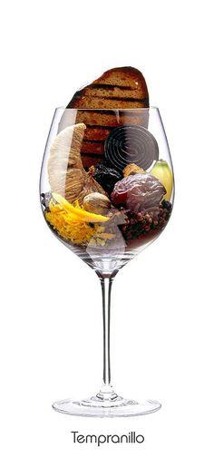 Tempranillo - aroma: Ciruela, plátano, higo seco, fecha, cáscara de naranja, enebro, clavo, pimienta negro, nuez moscada, cacao, pan tostado, pan de jengibre.