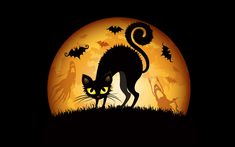 Halloween Fun Fact: With their link to the ancient Celtic festival of Samhain (a precursor to Halloween) and later to witches, cats have a permanent place in Halloween folklore. During the ancient celebration of Samhain, Druids were said to throw cats into a fire, often in wicker cages, as part of divination proceedings. #dsgt #Halloween