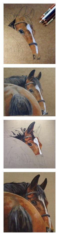 How to draw a horse. From sketch to signature with Tony O'Connor whitetreestudio.ie