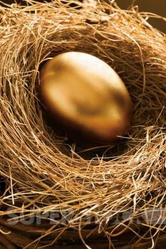 """I'm going to paint a duck egg gold, and put it in the chicken coop for the kids to """"find"""".  Then let that lead up to reading the Goose who laid a golden egg."""