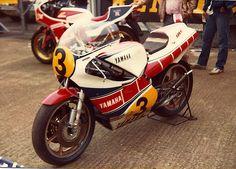 Yzr 500 1981