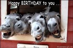 leopard pun birthday wishes - Yahoo Image Search Results