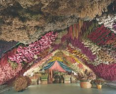 France - Step inside an Ali Baba's Cave of Dried Flowers Finding A New Hobby, Messy Nessy Chic, Ali Baba, French Countryside, Step Inside, New Hobbies, Dried Flowers, Natural, Wonderland