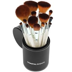 The Ten Best Makeup Brush Sets Under $50 // #1 Coastal Scents Pearl 16-Piece Brush Set // Check out the rest of the best here!