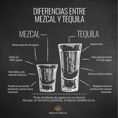 Mezcal Vs Tequila  . . . . . . #mezcal #tequila #difference #productomexicano #shots #mezcalcómplice Booze Drink, Bar Drinks, Wine Drinks, Cocktail Drinks, Alcoholic Drinks, Summer Cocktails, Beverages, Mezcal Tequila, Vodka Lime