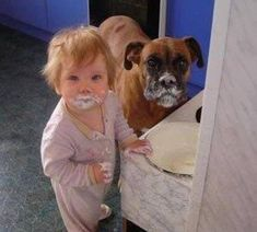 Caught in the Act! Funny Dog pictures