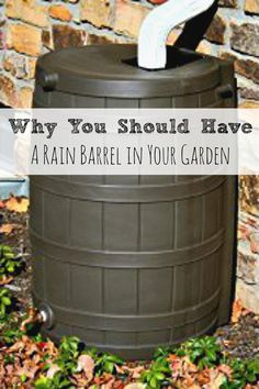 Why You Should Have a Rain Barrel in Your Garden & How to Make One in Ten Minutes !