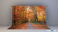 Falling for Autumn – Photography Backdrop