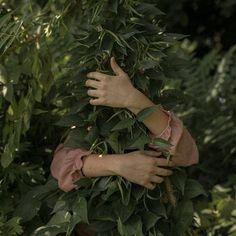 sogno una puntata di black mirror che non mi faccia venire l'ansia e che parli di quando nel futuro guarderemo le serie tv sul divano abbracciati ad un pothos foto di will cornfield . . . . . . #urbanjungle #urbanjunglebloggers #plantlady #botanicalpickmeup #plantsmakepeoplehappy #plantsofinstagram #plants #fern #houseplants #houseplantclub #foliage #hugs  #plantladyisthenewcatlady #pothos #girlwithplants #botanicalwomen #botanical #future #blackmirror