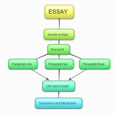 essay for first aid
