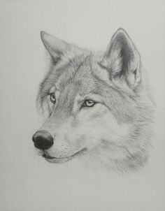 Another wolf tattoo for inner wrist