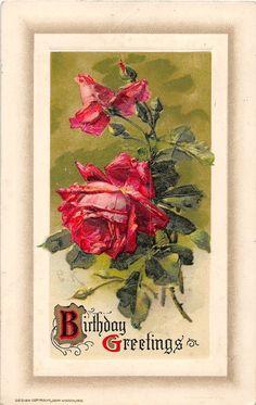 Birthday Greetings Roses Winsch Klein Artist Signed Antique Postcard (J17571)