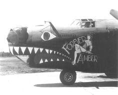 """B-24 """" FOREVER AMBER """""""