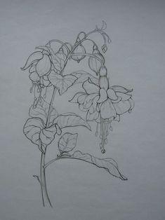 Sưu tầm mẫu vẽ cách điệu các loài hoa - Page 6