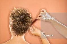Stock Photo : Woman getting hair combed