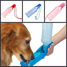 Real Sale Comedero Perro Potable Pet Dog Water Feeding Drink Bottle Dispenserc Dispenser Blue/red/pink *** You can find more details by visiting the image link. (This is an affiliate link and I receive a commission for the sales) Travel Water Bottle, Pet Water Bottle, Drinking Water Bottle, Water Bottles, Plastic Bottle, Pet Dogs, Dog Cat, Labrador Dogs, Dog Water Dispenser