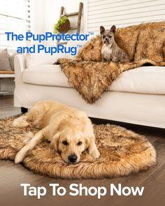 Yorkie, Chihuahua, Animal Print Bedding, Orthopedic Dog Bed, Dog Blanket, Doggy Stuff, Pet Life, Labradors, African Animals