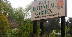 Kula Botanical Garden is an botanical garden located in Maui, Hawaii featuring over exotic and native plant varieties. Kula Hawaii, Kula Maui, Maui Hawaii, Vacation Rentals By Owner, Maui Travel, Hawaii Homes, Best Kept Secret, Hawaii Vacation, Treasure Island